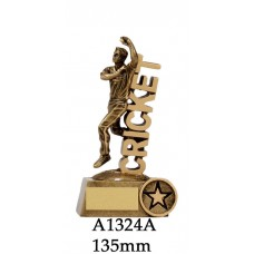 Cricket Trophies Bowler A1324A - 135mm Also 160mm