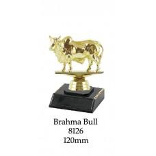 Novelty Trophies Brahma Bull 8126 - 125mm
