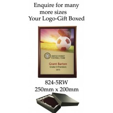 Soccer Plaque 824-5RW - 250mm x 200mm