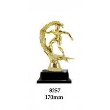Novelty Trophies Surfer 8257 - 170mm