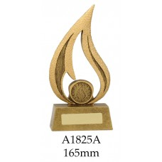 Knowledge Trophy A1825A - 165mm Also 180mm & 210mm