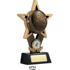 Cricket Trophies A979A - 152mm Also 176mm