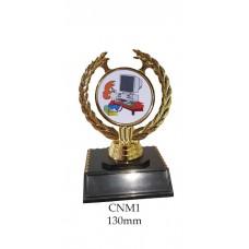 Novelty Trophies Computer Nerd CNM01 - 130mm