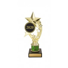Universal Trophies S20-2915 - 220mm Any Logo
