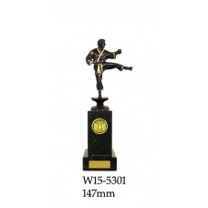 Martial Arts Trophies W15-5301 - 147mm Also 197mm 222mm & 247mm