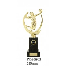 Volleyball Trophies W16-5903 - 245mm