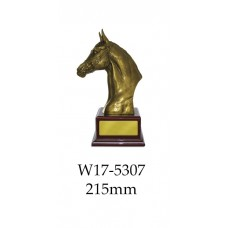 Equestrian Trophies W17-5307 - 215mm Also 315mm