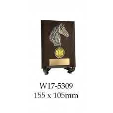 Equestrian Trophies W17-5309 - 155mm x 105mm Also 2 larger sizes