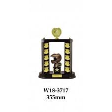 Motorsport Trophies W18-3717 - 355mm Also 380mm & 435mm