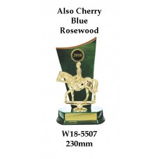 Equestrian Trophies W18-5507 - 230mm Also 260mm & 290mm