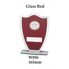 Corporate Awards W856 - 165mm