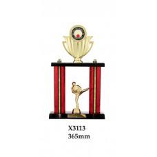 Martial Arts Trophies X3113 - 365mm