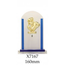 Boxing Trophies Glass X7167 - 160mm Also 180mm & 210mm